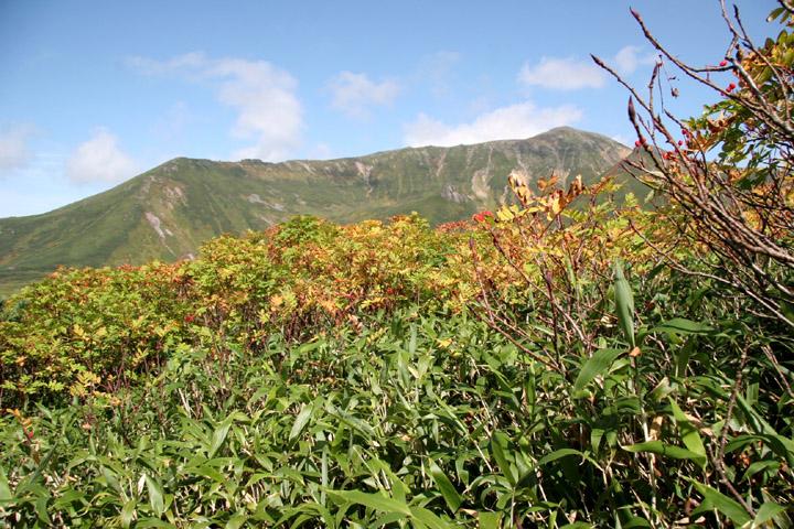 当麻岳、安足間と紅葉