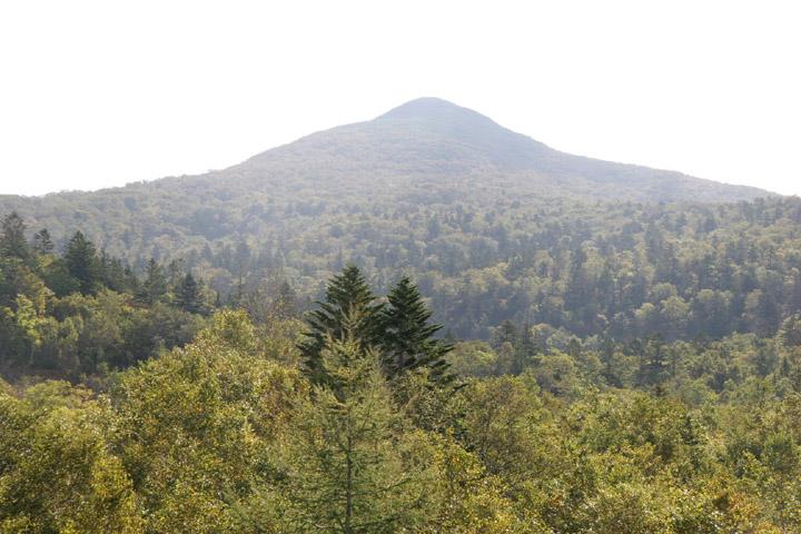 すっきり綺麗な山頂が見えるよ